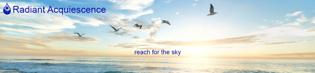 Radiant Acquiescence Website Header Image birds an a blueish yellow sunrise with caption reach for the sky
