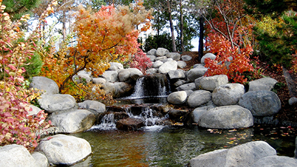 Radiant Acquiescence Website - Virtues - Acceptance - picture of autumn trees over water falling over rocks into a pool of water in a creek